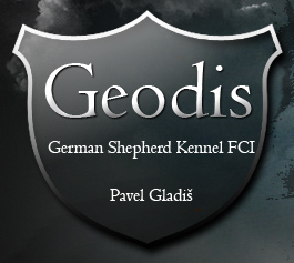 GEODIS FCI KENNEL
